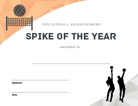 Essential volleyball printables bestvolleyballdrills youll also get 27 printable award certificates to boost morale and motivate your team yadclub Image collections